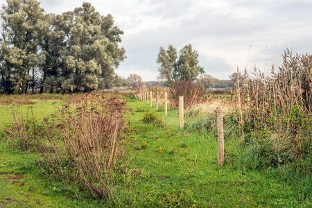 Part of the Dutch nature reserve Groesplaat has been fenced off to protect the vulnerable nature. The area is on the floodplains of the river Boven Merwede near the village of Sleeuwijk, North Brabant Stock fotó