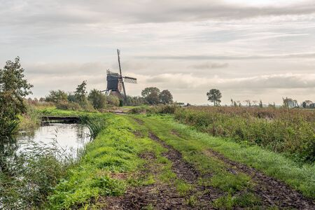 Typical Dutch polder landscape in autumn. The photo was taken on a cloudy day near the village of Dussen, Altena, North Brabant.