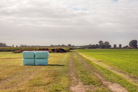 Mown grassland with in the foreground four stacked packages of hay wrapped in green plastic film and waiting for transport to the farm. It is a cloudy day in the Dutch fall season.