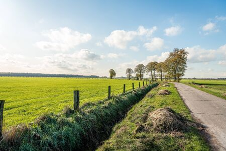 Seemingly endless concrete country road in a rural area near the Belgian village of Wuustwezel, province of Antwerp, Flanders region. It is a sunny day in autumn with a clear blue sky and some clouds. Stockfoto