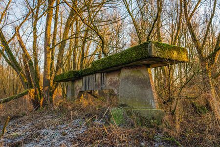 Unused concrete bridge pillar covered with moss iand hidden in the wild Dutch nature.