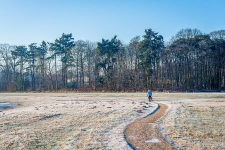 Meandering path in a winter landscape. The photo was taken early on a sunny winter morning in the Markdal nature reserve, south of the Dutch city of Breda, Noord-Brabant.