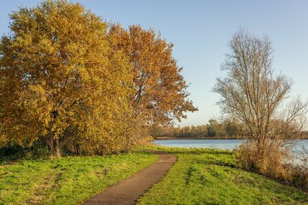 Curved footpath along a lake. The path is between an almost bare tree on one side and a large tree with many bright brown-orange colored leaves on the other. It is fall in the Netherlands.