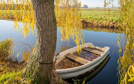 Rowing boat filled with water and yellow colored leaves fallen from the weeping willow on the shore. It is a sunny day in autumn in the Netherlands.