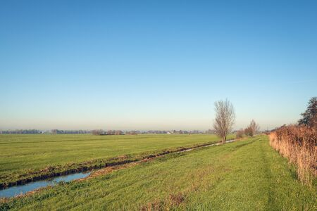 Flat polder landscape in the Netherlands. There is a narrow ditch in the grass. Its autumn now. The photo was taken on a sunny day in the Alblasserwaard, a region in the province of South Holland. Stockfoto