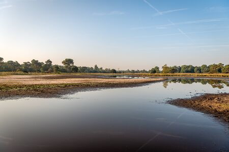 Wide Dutch nature reserve with a fen and sandy plains at the start of a beautiful summer day. The sky is blue with white contrails.