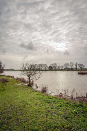 Vertical image from the edge of a Dutch lake. It is a cloudy day in the winter season and the sun tries in vain to clear the clouds. Фото со стока