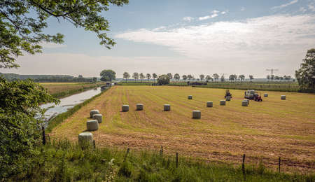 Hay bales in plastic foil on the freshly mowed grass. The photo was taken on a sunny day in springtime near the small village of Elshout in the Dutch province of North Brabant. Standard-Bild