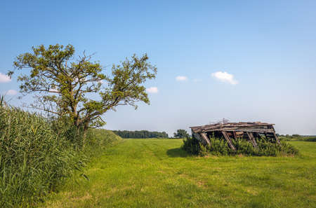 Dilapidated wooden shed in the grass. The photo was taken on a sunny summer day in the Dutch province of North Brabant. Standard-Bild