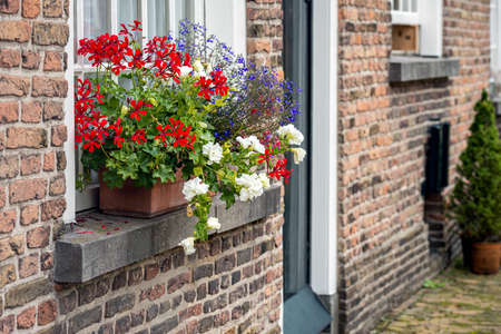 Colorful red, white, and blue flowers in the windowsill of a small house in the historic beguinage in the Dutch city of Breda, province of North Brabant. It's a sunny day in the summer season.