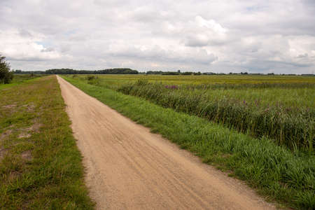 A long sandy path through the Terheijdense Binnenpolder, a peat meadow area created by peat being dug between the 13th and 15th century. The swampy site was lowered 1.5 meters as a result. Standard-Bild