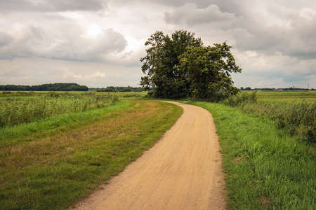 Curved sandy path through a Dutch peat meadow area in the province of North Brabant. It's summer but the sky is overcast. Standard-Bild