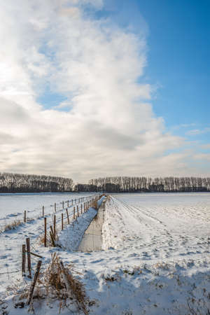 Dutch winter landscape with ditch and fences. The water in the ditch is partially frozen. The photo was taken in the Dutch province of North Brabant near the small village of Drimmelen.