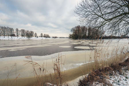 Dutch winter landscape with a lake covered with snow and ice. The photo was taken on a cloudy day at the Gat van den Ham nature reserve near the village of Lage Zwaluwe, province of North Brabant. Standard-Bild