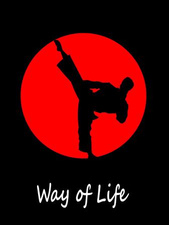 Silhouette of karate fighter doing high kick. Vector illustration Illustration