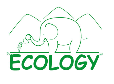 Line style elephant ilustration