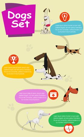 dog walking: Dogs infographics vector