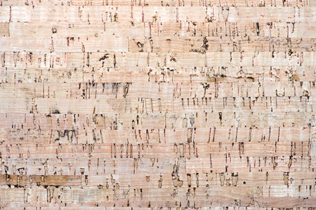 cork texture background 写真素材
