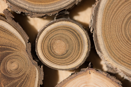 Sandalwood core macro
