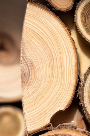 Core of juniper and sandalwood background 写真素材