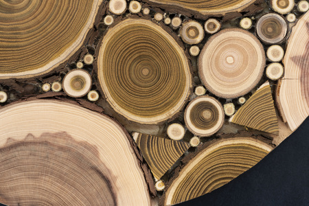 Board with sawed branches by juniper and acacia Imagens