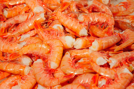the merchant of venice: Shrimps on sale in the market, in Venice, Veneto, Italy