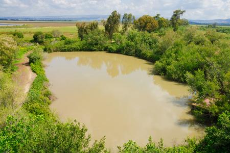 nature reserves of israel: Wetland landscape, in En Afek Nature Reserve, northern Israel