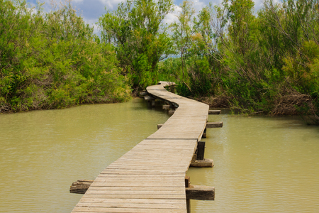An elevated wooden footpath over a water pond, in En Afek Nature Reserve, northern Israel photo
