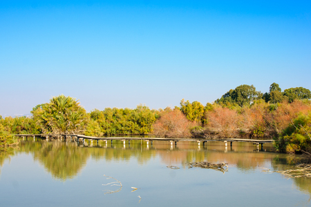 nature reserves of israel: An elevated wooden footpath over a water pond in En Afek Nature Reserve northern Israel Stock Photo