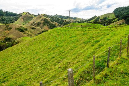 north island: Landscape of green hillls at the east side of Northland North Island New Zealand Stock Photo