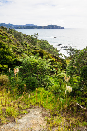 north island: View of the ocean shore at the east side of Northland North Island New Zealand