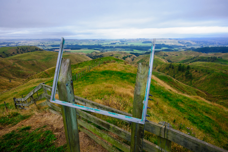 north island: Typical landscape of green fields in the north island of New Zealand