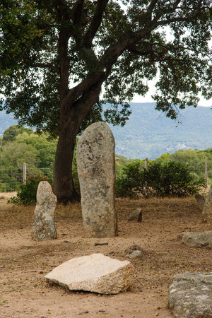 megaliths: The menhirs alignment of Renaggiu in the megalithic site of Cauria Sartene area Corsica France