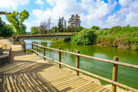 nahal: Nahal Alexander Alexander stream nature reserve and the Turtle Bridge. Israel Stock Photo