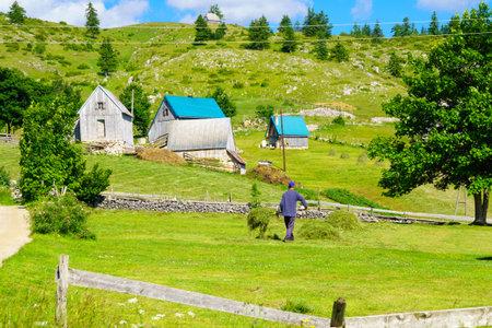 gora: ZABLJAK, MONTENEGRO - JULY 03, 2015: A village Mala Crna Gora, and a farmer, in Durmitor area, Northern Montenegro