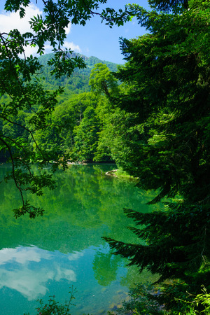 gora: View of Lake Biograd Biogradsko jezero, Biogradska Gora national park, Montenegro