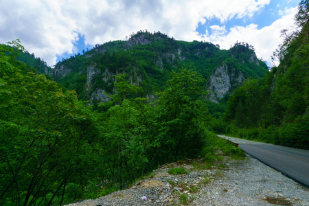 tara: A road along the Tara Canyon, northern Montenegro