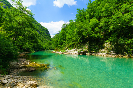 tara: The Tara River and Canyon, northern Montenegro