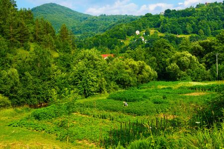 republika: LUKAVAC, BIH - JULY 04, 2015: View and countryside, with a farmer, along the M18 road in the Republika Srpska, Bosnia and Herzegovina