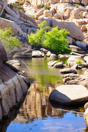 joshua: Stream and rocks in Joshua Tree National Park, California, USA
