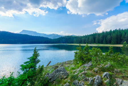 forest park: The Black Lake Crno jezero in Durmitor National Park, Montenegro Stock Photo