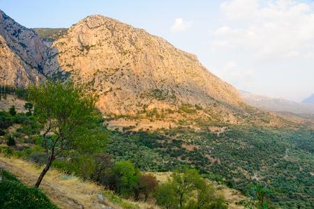 delphi: Landscape of a Valley near delphi at sunset, Greece
