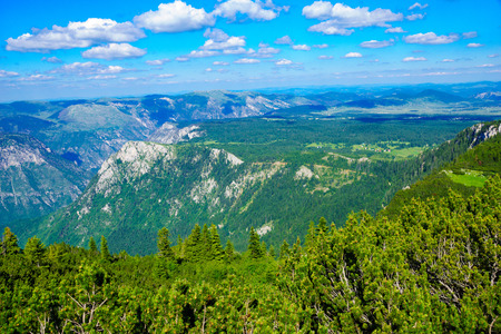 tara: Landscape view and the Tara River Canyon, in Durmitor National Park, Northern Montenegro