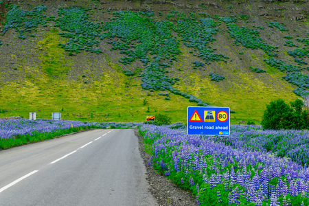 unpaved road: Gravel (unpaved) road sign on road 60, in the west fjords region, Iceland