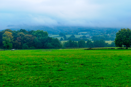 Countryside and horses in the Morvan Mountains, in Burgundy, France