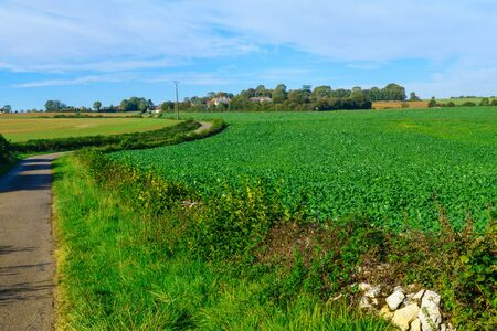 Countryside with fields and farms, in Cote dOr, Burgundy, France