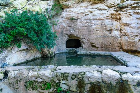 View of a spring and a pool (Ein Meshotetim, explorers spring) along Wadi Siah. This green valley is a refuge from the bustle of the city, in Haifa, Israel