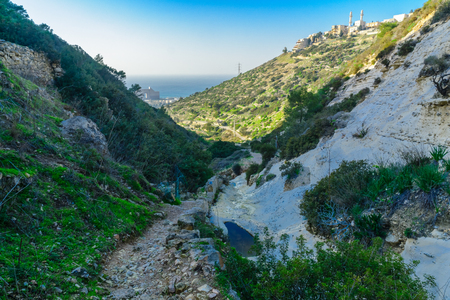 View of Wadi Siah. This green valley is a refuge from the bustle of the city, in Haifa, Israel Stock Photo