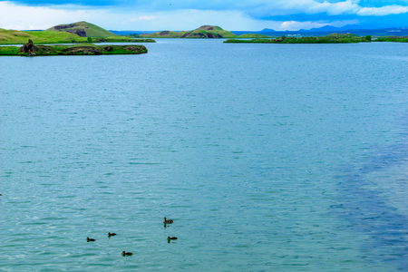 View of Lake Myvatn with various volcanic rock formations, and birds. Northeast Iceland Stock Photo