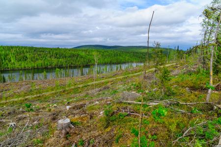 Landscape of the Kuntijarvi lake, near Kuusamo, Finland
